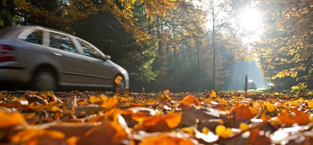 Jesienna jazda - o czym warto pamiętać?