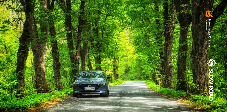 Slow Road w Nawigacji Orange